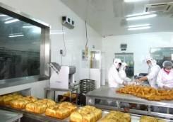 ——  食品烘培面包10万级洁净厂房工程设计装修  ——